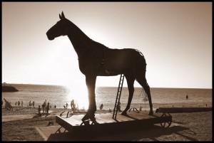 trojan horse web design